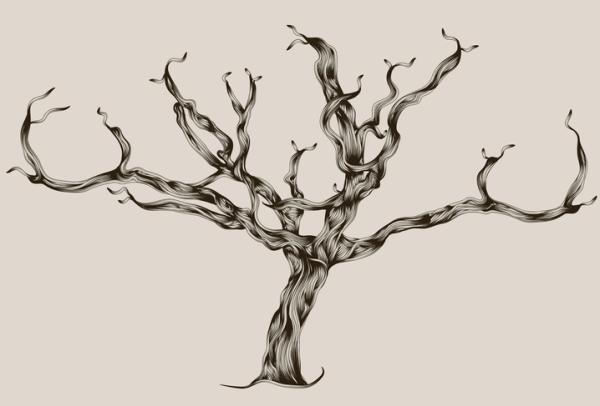 Actividades para personas con Alzheimer - Realización de un árbol genealógico