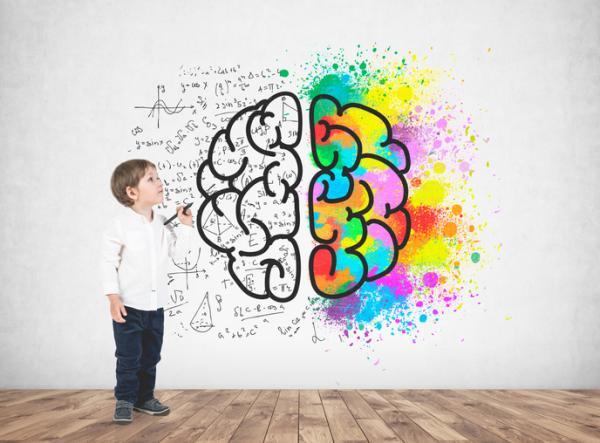 Howard Gardner: biografía, teoría de las inteligencias múltiples y libros - Howard Gardner y la teoría de las inteligencias múltiples