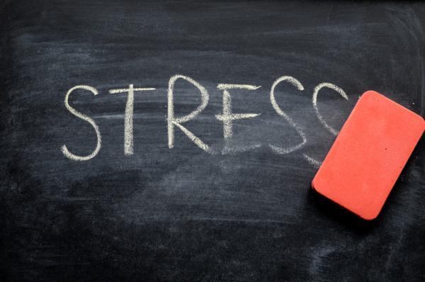 Estrés, ansiedad, recopilación de síntomas y alternativas psicoterapéuticas - El estrés y los signos más habituales