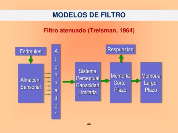 Modelo de Filtro Rígido y Atenuado - Paradigma de la amplitud de memoria dividida