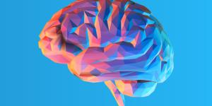 Diferencias entre sistema nervioso central y periférico