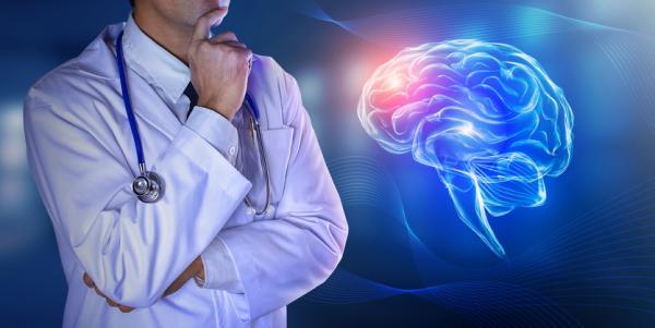 Diferencias entre sistema nervioso central y periférico - Sistema nervioso central (SNC): función