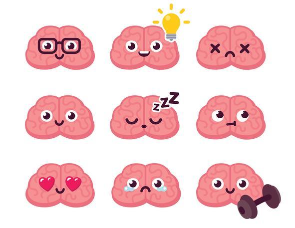 Diferencias entre sistema nervioso central y periférico - Sistema nervioso periférico (SNP) y sus partes