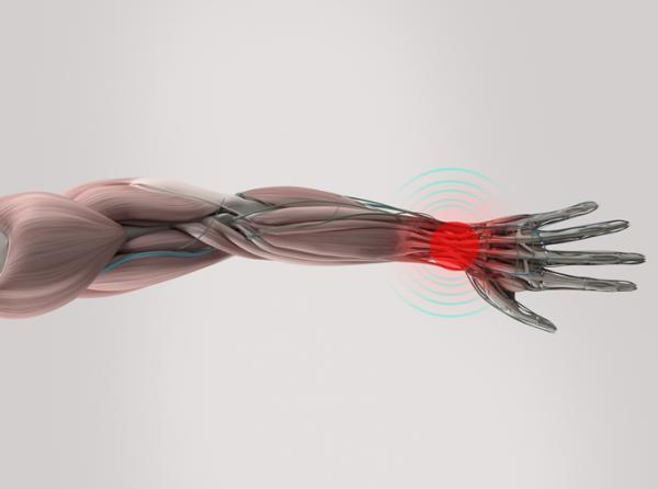 Sistema nervioso periférico: funciones y partes - Sistema nervioso periférico: enfermedades