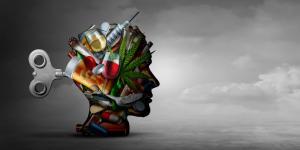 Efectos de las drogas en el sistema nervioso