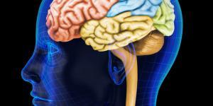 Los umbrales sensoriales: definición