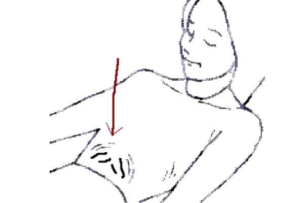 Técnicas de relajación de Bernstein y Brokovec - Relajación del estómago