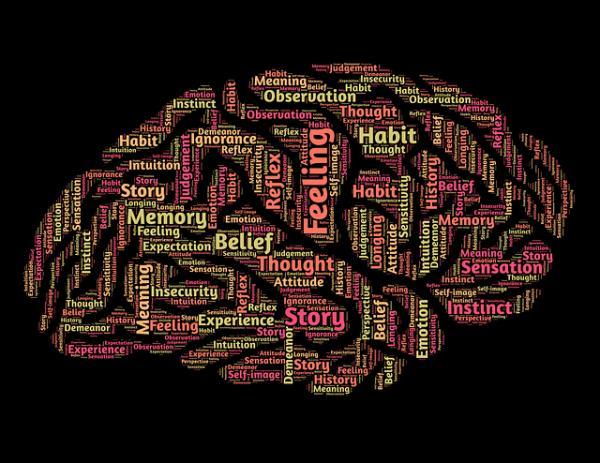 La relación entre neurotransmisores y emociones - ¿Qué son los neurotransmisores?