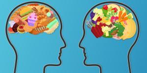 Alimentos para la concentración y la memoria