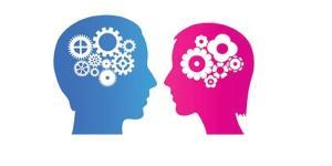 Diferencias entre el cerebro masculino y femenino