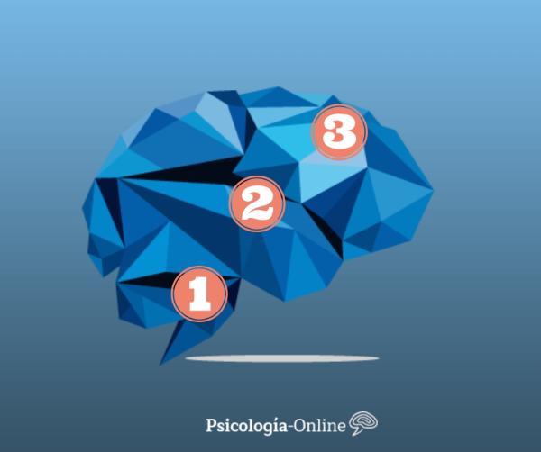 La teoría del cerebro triuno de MacLean