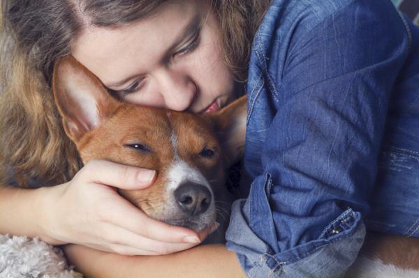 ¿Cómo superar la muerte de un perro?