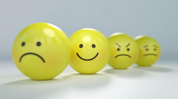 La Autorregulación Emocional y la inteligencia emocional - Los cinco elementos del modelo de Gross