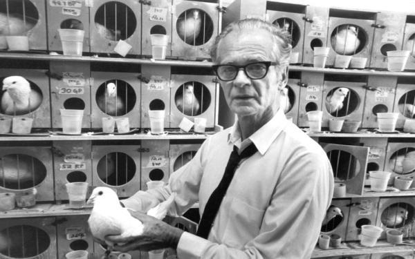 La teoría de B.F. Skinner: conductismo y condicionamiento operante