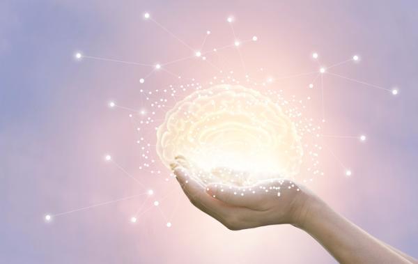 Psicología General: La Neurona - El potencial de acción