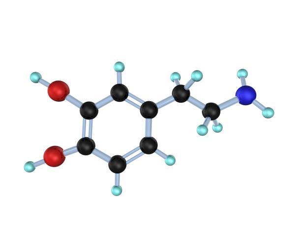 Qué es la dopamina: definición y funciones - Dopamina: definición