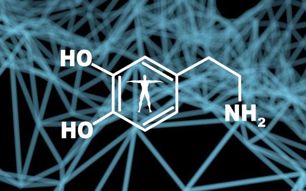 Qué es la dopamina: definición y funciones