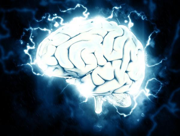 Tipos y clasificación de las crisis epilépticas - Qué es la epilepsia: definición y causas