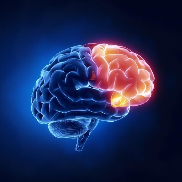 Demencia: qué es, tipos, síntomas y causas - Demencia frontotemporal