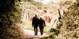 Cómo cambian nuestras capacidades cognitivas en el envejecimiento