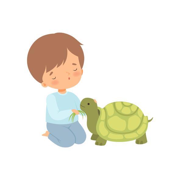 Técnica de la tortuga: cuento para trabajar el autocontrol - Cuento de la tortuga