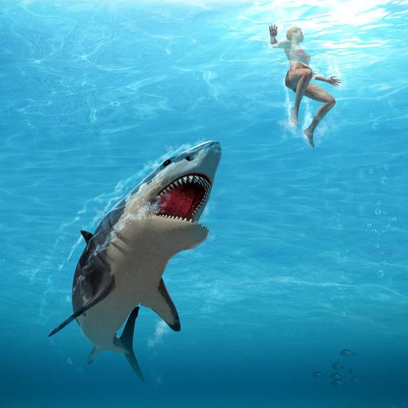Qué significa soñar con tiburones - Qué significa soñar con tiburones que atacan