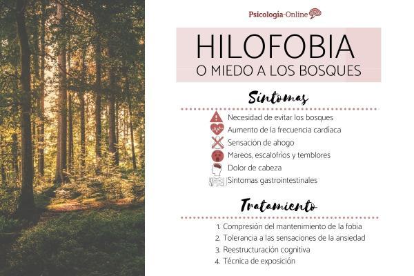 Miedo a los bosques o hilofobia: síntomas, causas y tratamiento