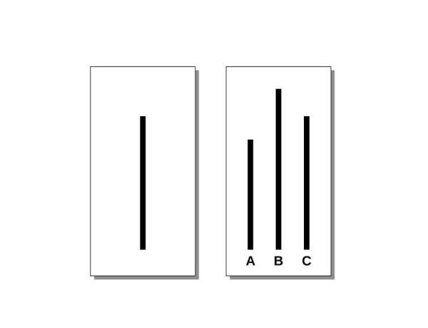 Experimento de Asch:influência da maioria e a conformidade