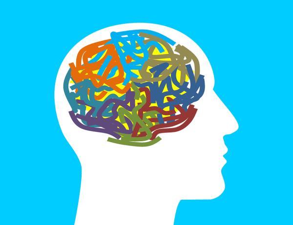 Teste de dominância cerebral de Herrmann
