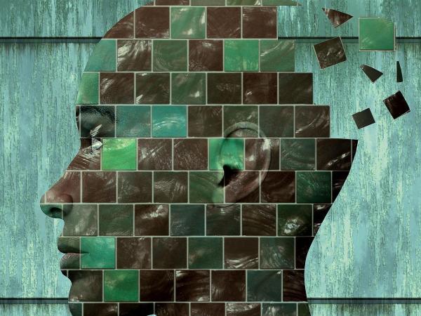 Quais são os processos cognitivos básicos - 1. Percepção