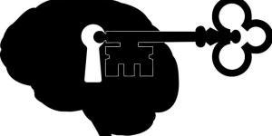 Partes do cérebro e suas funções