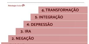 As fases do luto