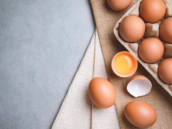 O que significa sonhar com ovo