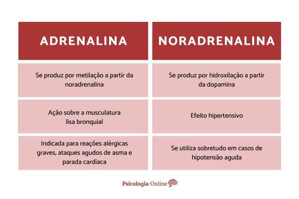 Diferenças entre adrenalina e noradrenalina