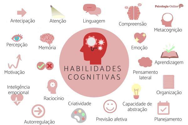 Habilidades cognitivas: o que são, tipos, lista e exemplos