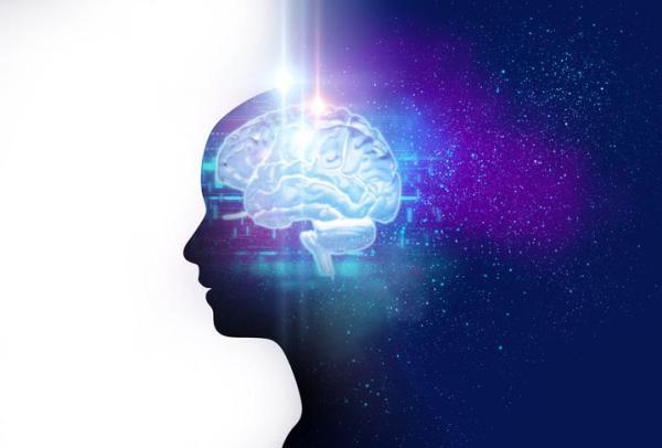 15 tipos de inteligência