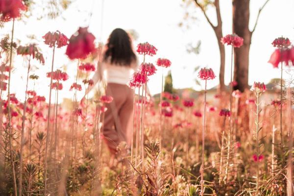 Como ser feliz e encontrar paz interior
